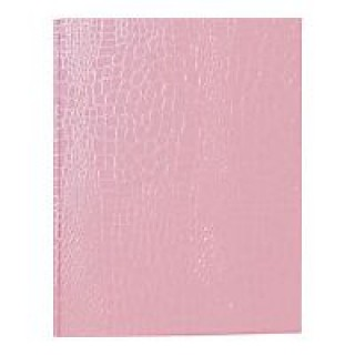Aurora Products #406059 - Binder GB PROformanceII 8.5x11 Pink Ea