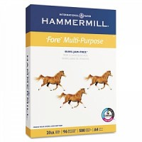 Hammermill Papers Group #10303-6