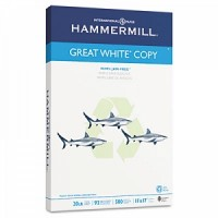 Hammermill Papers Group #86750
