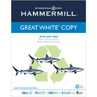 Hammermill Papers Group #745190